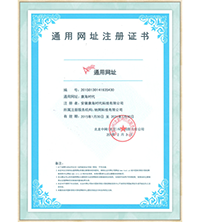 Universal web site registration certificate